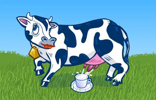 奶牛怀孕多长时间